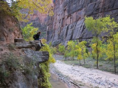 Hanging out in Zion