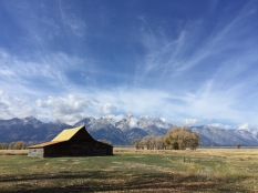 The famous barn in front of the tetons